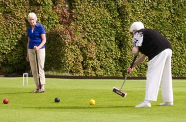 Croquet Lawn 2 players